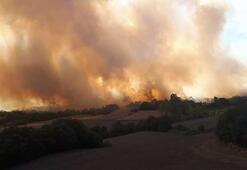 Son dakika: Bursada korkutan orman yangını