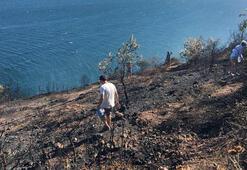 Burgazadada ormanlık alanda yangın çıktı