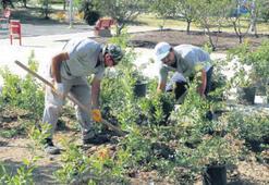 Yeşil Karşıyaka için çalışmalar sürüyor