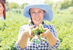 Yerel tohumlar Aydın'da güvende