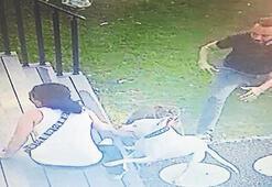 Beslenmesi yasak olan cins köpek, bir kadına saldırdı