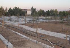 Bombalı saldırıda yıkılan emniyetin yerinin Millet Bahçesine dönüşümü sürüyor