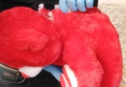 Taşıdıkları oyuncak ayının içerisinde bomba çıkan 2 kişi tutuklandı