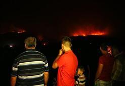 Son dakika: İzmirdeki yangında son durum: Yerleşim merkezlerinden uzaklaştırıldı