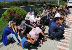18 koltuklu minibüsten 54 mülteci çıktı