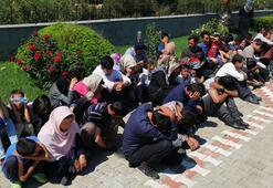 Çanakkalede 274 düzensiz göçmen yakalandı