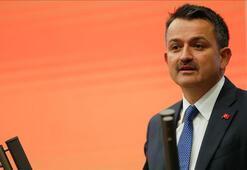 Bakan Pakdemirli 2019 üzüm rekoltesini açıkladı