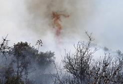 Muğladaki orman yangını sonrası Meteorolojiden uyarı