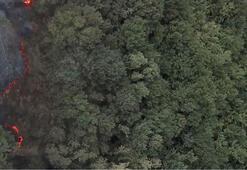 Ünlü erkek giyim markası İzmir Kınıklada 5 bin ağaç dikiyor