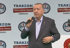 Cumhurbaşkanı Erdoğandan, Emine Bulut cinayetiyle ilgili sert sözler