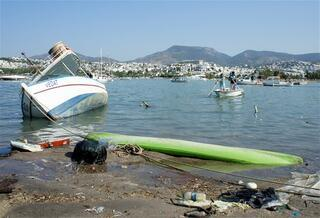 30 cm tsunami