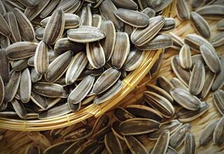 Sperm sayısını arttıran 8 etkili yiyecek