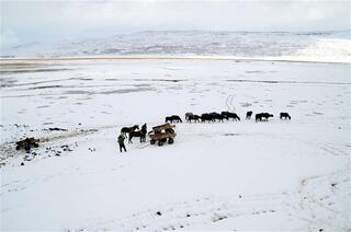 Dondurucu soğukta kaplıca keyfi