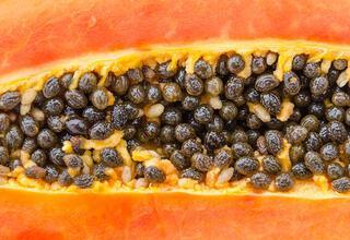 Papaya meyvesinin faydaları