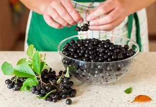 Aronia meyvesinin bilinmeyen faydaları