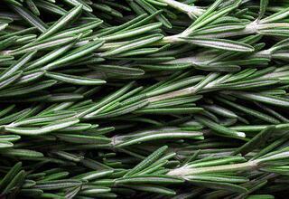 Bahar aylarında nükseden hastalıklara iyi gelen besinler