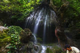 Orman içinde cennet