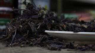 Arapgirin mor reyhanı tam bir şifa kaynağı