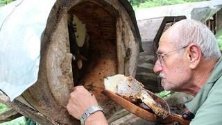 İnsan eli değmeden üretilen lezzet: Karakovan balı