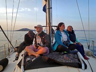 Marmara Denizi'ndeki yunuslar sayıldı