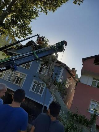 Beykozda dehşet Dev çınar ağacı binanın üzerine devrildi