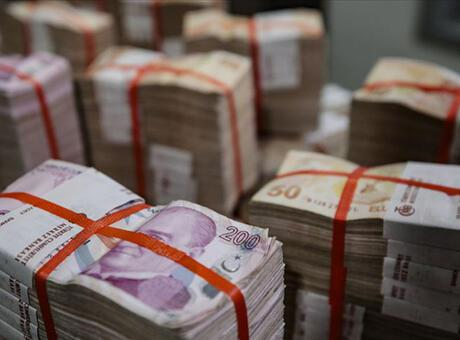 Hazine 2,9 milyar lira borçlandı