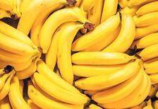 Sperm kalitesini arttıran besinler