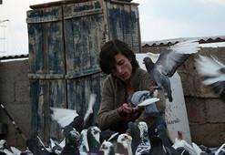 Türkiye'nin Güvercin'i Berlin'e kanat çırpıyor