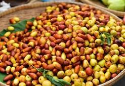 Hünnap meyvesinin faydaları