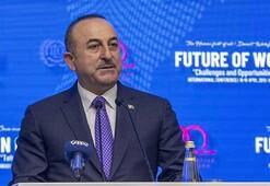 Dışişleri Bakanı Çavuşoğlu:Girişimci ve insani dış politika izliyoruz