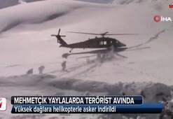 Mehmetçik yaylalarda terörist avında