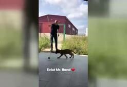 Gökhan Töre minik köpeğiyle eğleniyor