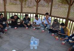 Hatayda 23 kaçak göçmen yakalandı