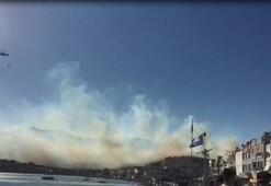 Son dakika | Dikilide korkunç yangın Ciğerlerimiz yanıyor