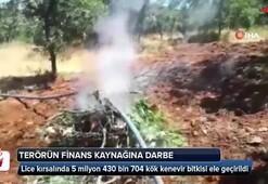 Diyarbakırda dev operasyon
