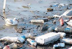 Tek kullanım plastik yasaklanmalı