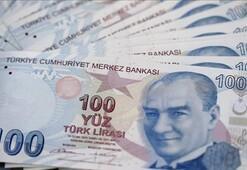 Devlet ve vatandaş BESte 100 milyar lira biriktirdi